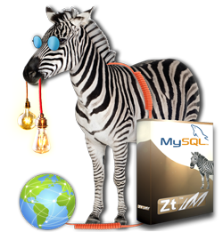 MEP-Expertise advice from Zebra